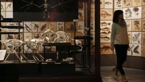 alojamiento-noche-europea-museos-valencia
